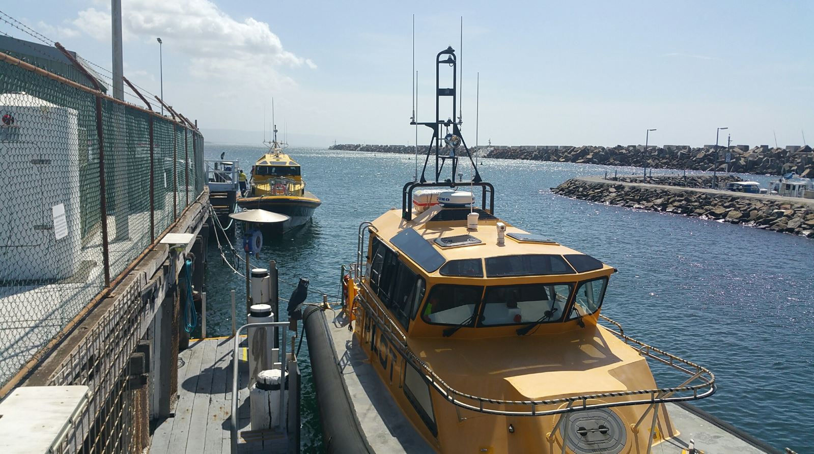 Pilot-Vessels_Sydney