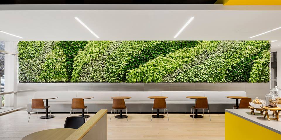 Living Wall..